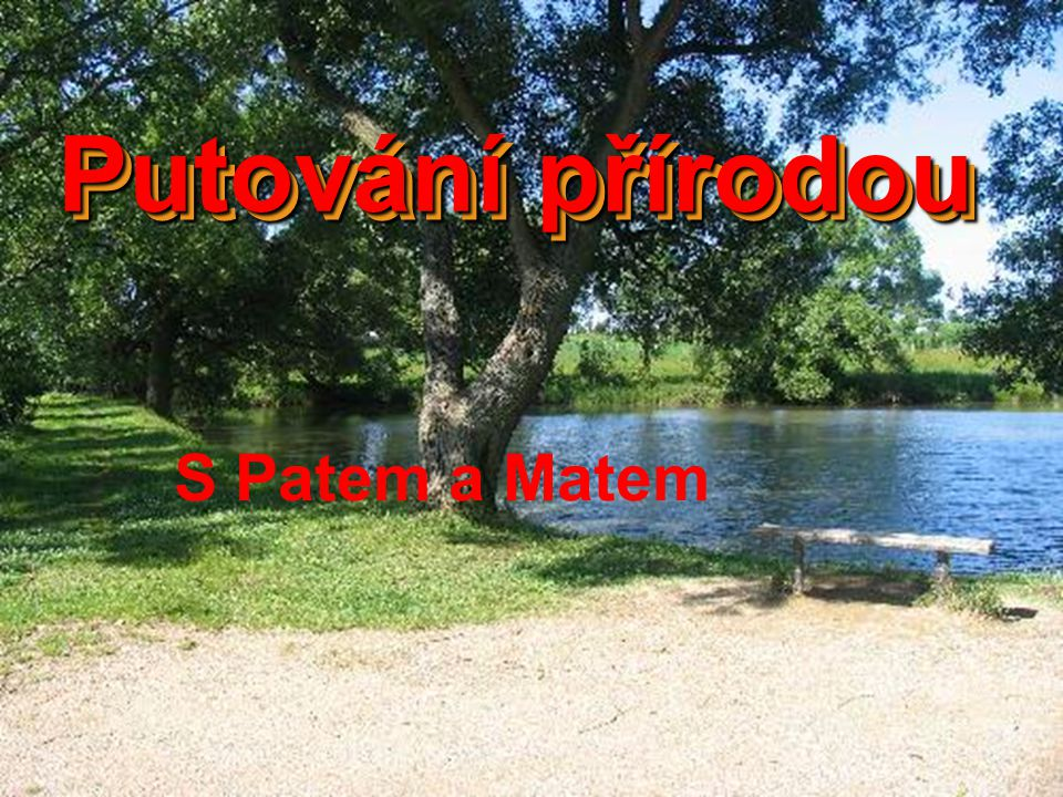 Jednoho krásného dne se Pat a Mat procházeli přírodou.