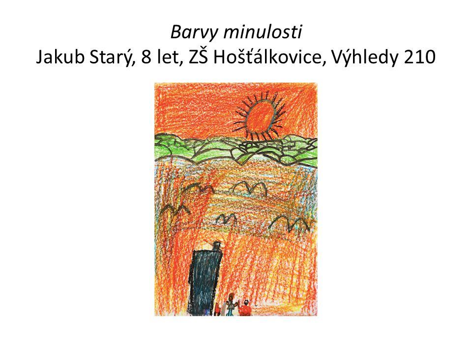 Barvy minulosti Jakub Starý, 8 let, ZŠ Hošťálkovice, Výhledy 210
