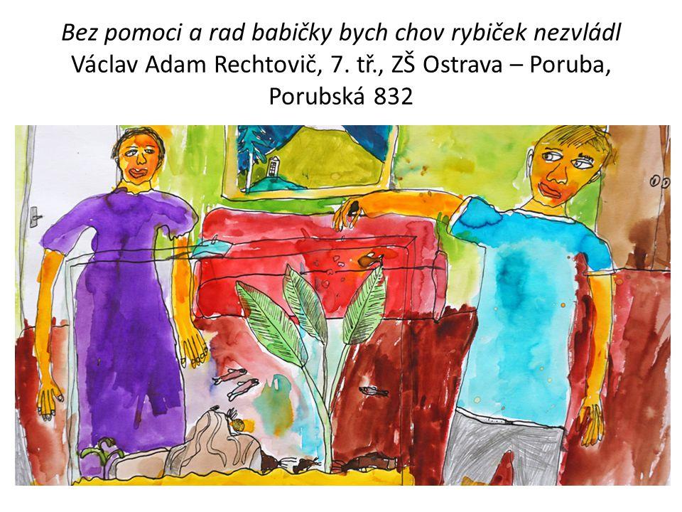 Bez pomoci a rad babičky bych chov rybiček nezvládl Václav Adam Rechtovič, 7. tř., ZŠ Ostrava – Poruba, Porubská 832