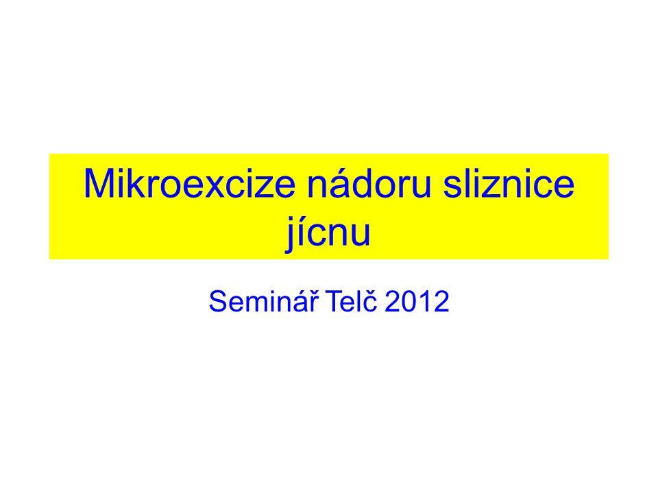 Mikroexcize nádoru sliznice jícnu Seminář Telč 2012