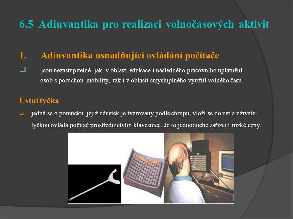 6.5 Adiuvantika pro realizaci volnočasových aktivit 1. Adiuvantika usnadňující ovládání počítače  jsou nezastupitelné jak v oblasti edukace i následn