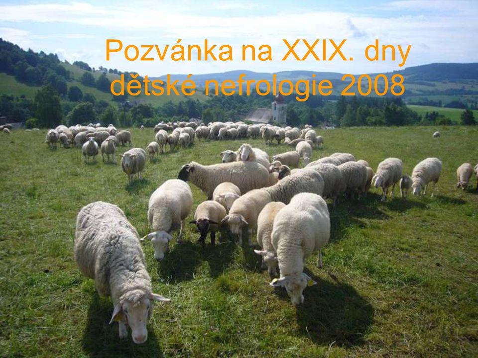 Pozvánka na XXIX. dny dětské nefrologie 2008