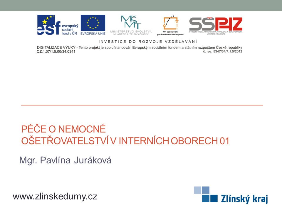 PÉČE O NEMOCNÉ OŠETŘOVATELSTVÍ V INTERNÍCH OBORECH 01 Mgr. Pavlína Juráková www.zlinskedumy.cz