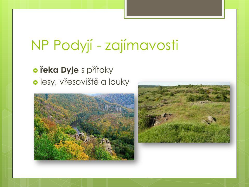 NP Podyjí - zajímavosti  řeka Dyje s přítoky  lesy, vřesoviště a louky