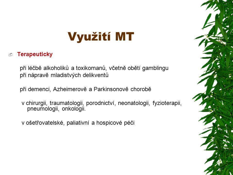 Využití MT  Terapeuticky při léčbě alkoholiků a toxikomanů, včetně obětí gamblingu při nápravě mladistvých delikventů při demenci, Azheimerově a Parkinsonově chorobě v chirurgii, traumatologii, porodnictví, neonatologii, fyzioterapii, pneumologii, onkologii.