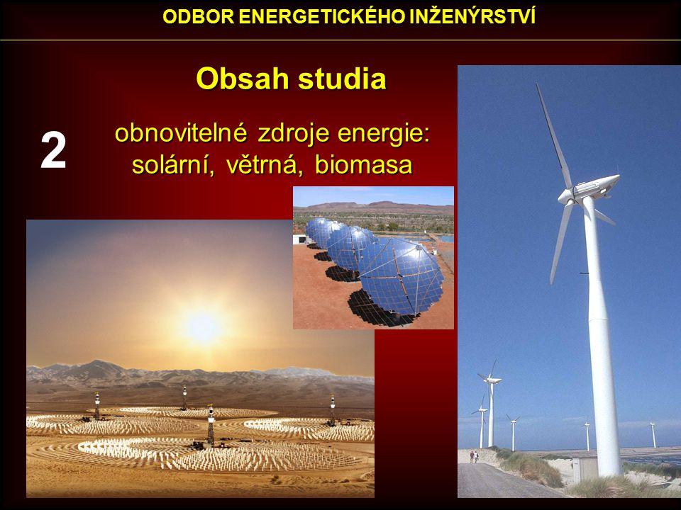 Obsah studia obnovitelné zdroje energie: obnovitelné zdroje energie: solární, větrná, biomasa solární, větrná, biomasa ODBOR ENERGETICKÉHO INŽENÝRSTVÍ 2