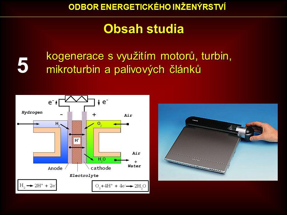 Obsah studia kogenerace s využitím motorů, turbin, mikroturbin a palivových článků ODBOR ENERGETICKÉHO INŽENÝRSTVÍ 5