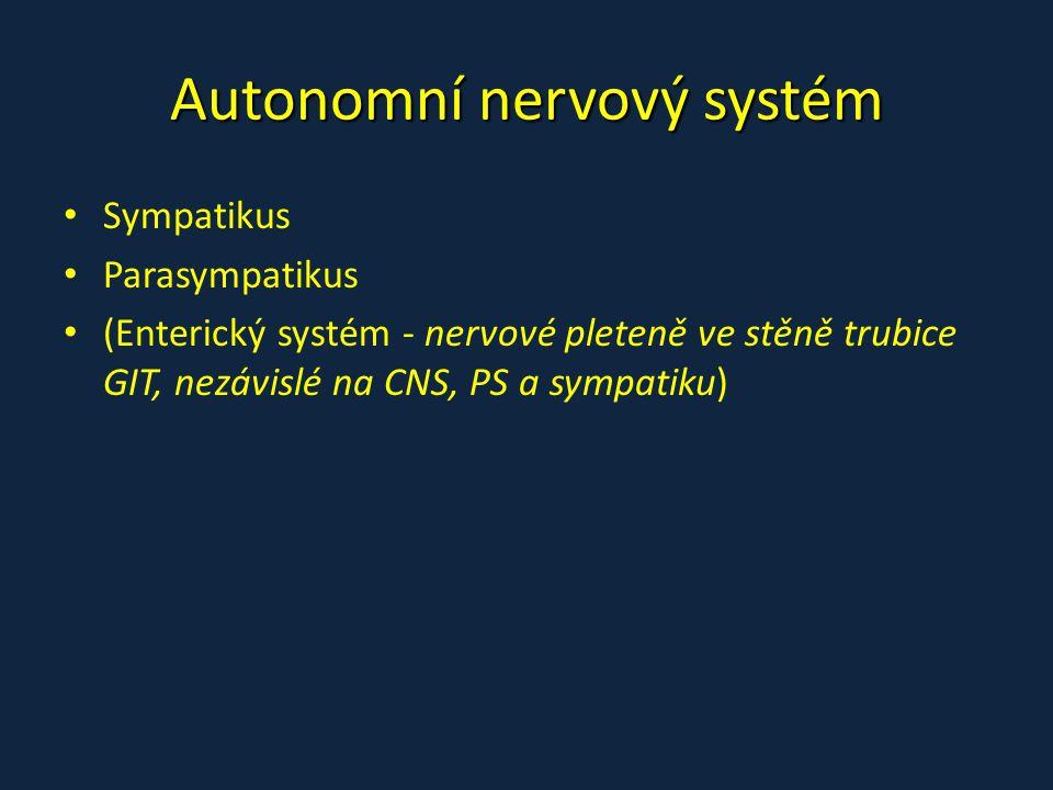 Autonomní nervový systém Sympatikus Parasympatikus (Enterický systém - nervové pleteně ve stěně trubice GIT, nezávislé na CNS, PS a sympatiku)