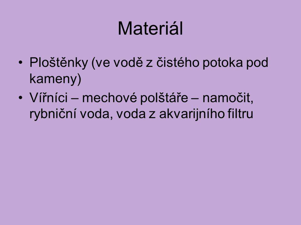 Materiál Ploštěnky (ve vodě z čistého potoka pod kameny) Vířníci – mechové polštáře – namočit, rybniční voda, voda z akvarijního filtru