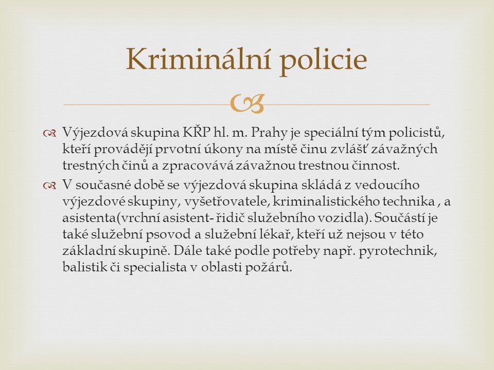   Výjezdová skupina KŘP hl. m. Prahy je speciální tým policistů, kteří provádějí prvotní úkony na místě činu zvlášť závažných trestných činů a zprac