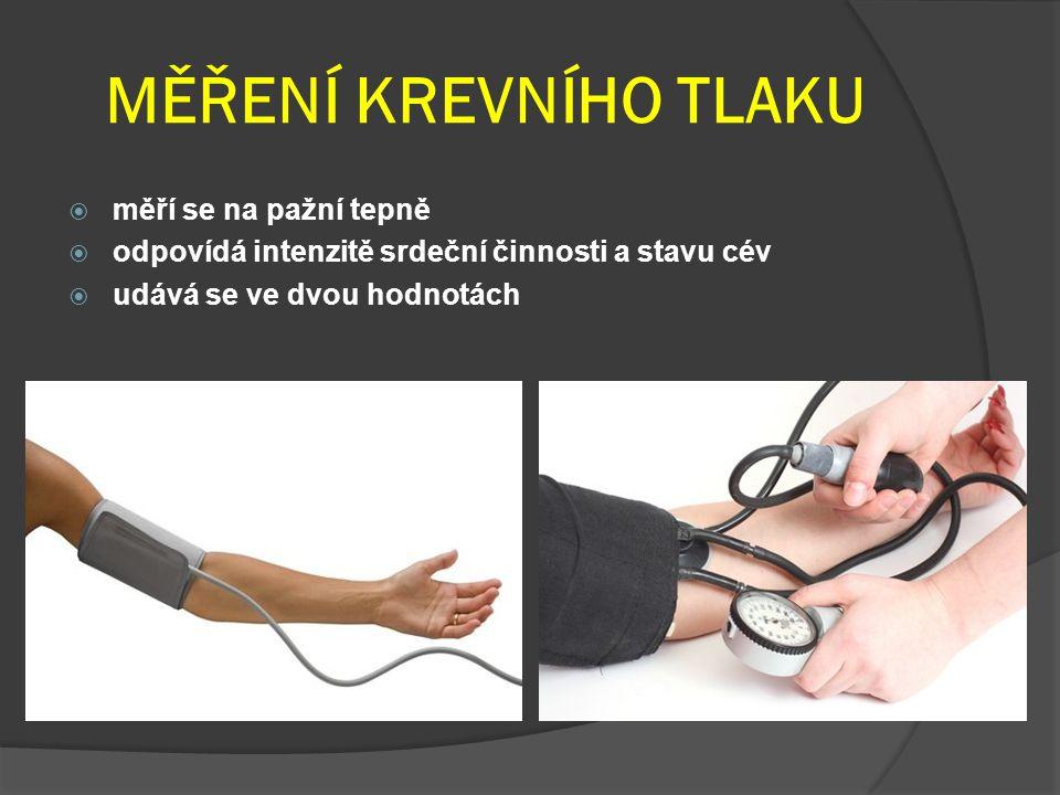 MĚŘENÍ KREVNÍHO TLAKU  měří se na pažní tepně  odpovídá intenzitě srdeční činnosti a stavu cév  udává se ve dvou hodnotách