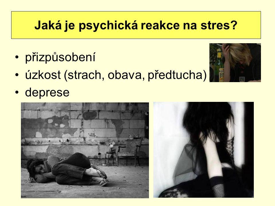 přizpůsobení úzkost (strach, obava, předtucha) deprese Jaká je psychická reakce na stres
