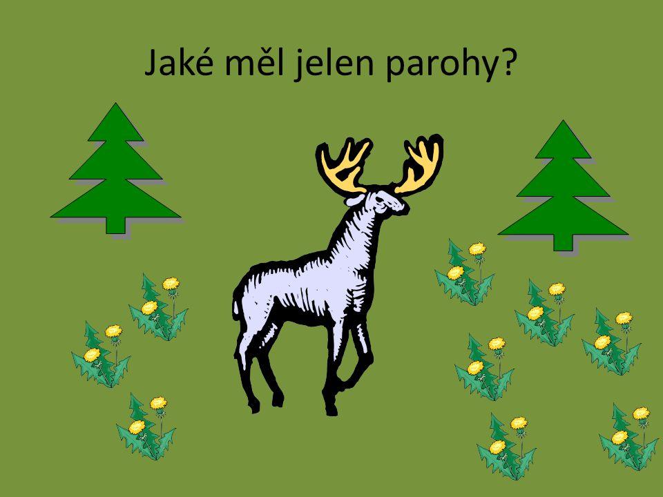 Jaké měl jelen parohy?