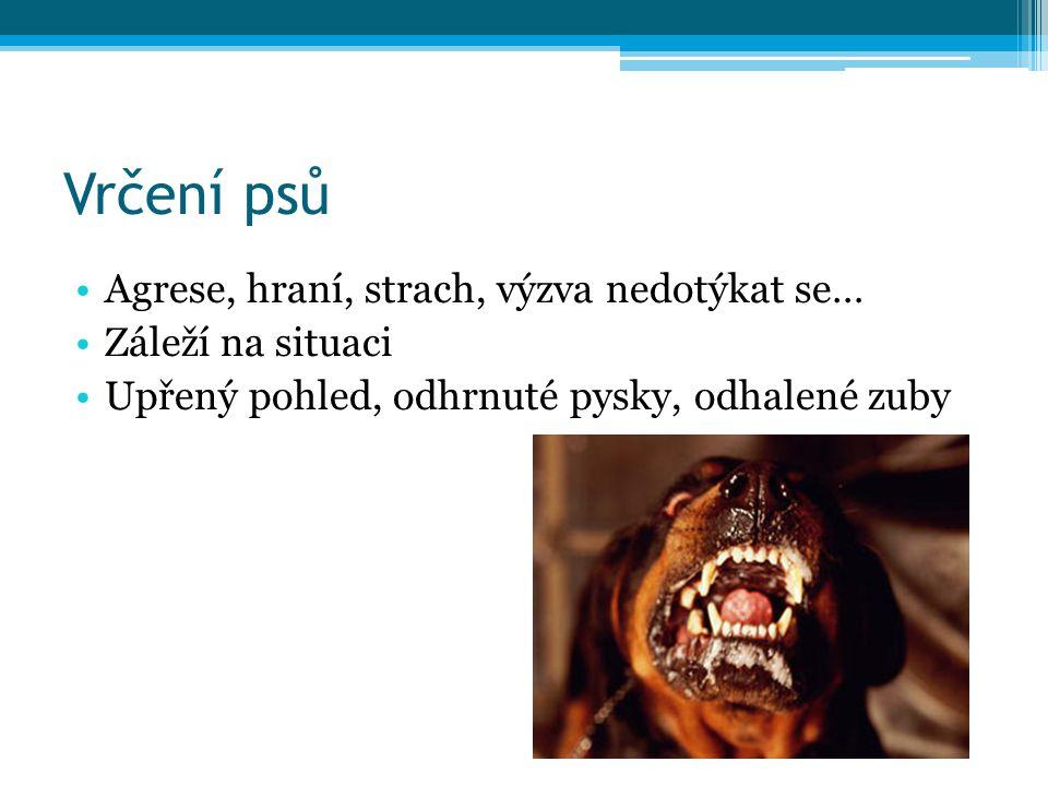 Vrčení psů Agrese, hraní, strach, výzva nedotýkat se… Záleží na situaci Upřený pohled, odhrnuté pysky, odhalené zuby
