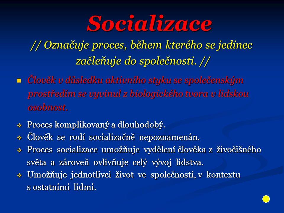 Socializace // Označuje proces, během kterého se jedinec začleňuje do společnosti.