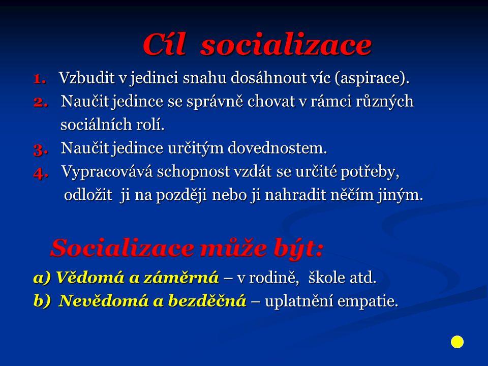 Cíl socializace