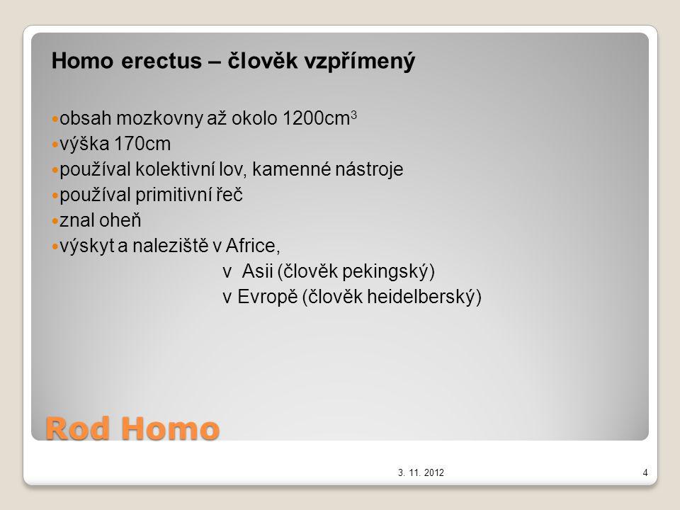Rod Homo Homo sapiens neandertalensis – člověk neandertálský – pračlověk klasický neandertálec – slepá větev obsah mozkovny až 1700 cm 3 výška okolo 165 cm, mohutný, masivní lebka žil v tlupách v jeskyních, vyráběl kostěné a kamenné nástroje sběrač, lovec, znal oheň, používal jednoduchou řeč naleziště: Moravský kras jeskyně Šipka u Štramberka časný neandertálec (spojovací článek mezi neandertálci a nejvyspělejšími formami člověka) 3.