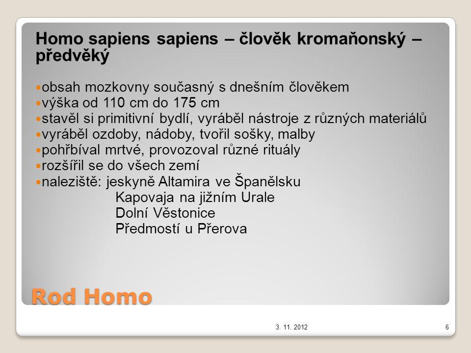 Rod Homo Homo sapiens sapiens – člověk kromaňonský – předvěký obsah mozkovny současný s dnešním člověkem výška od 110 cm do 175 cm stavěl si primitivn