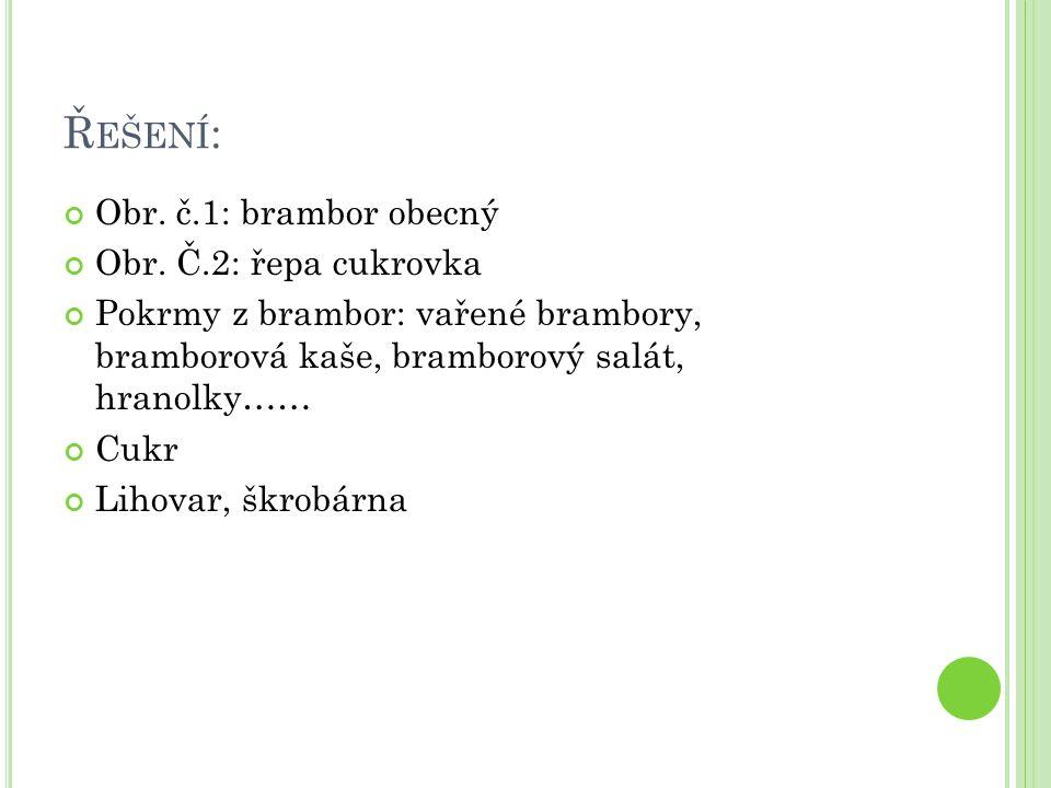 Ř EŠENÍ : Obr. č.1: brambor obecný Obr.
