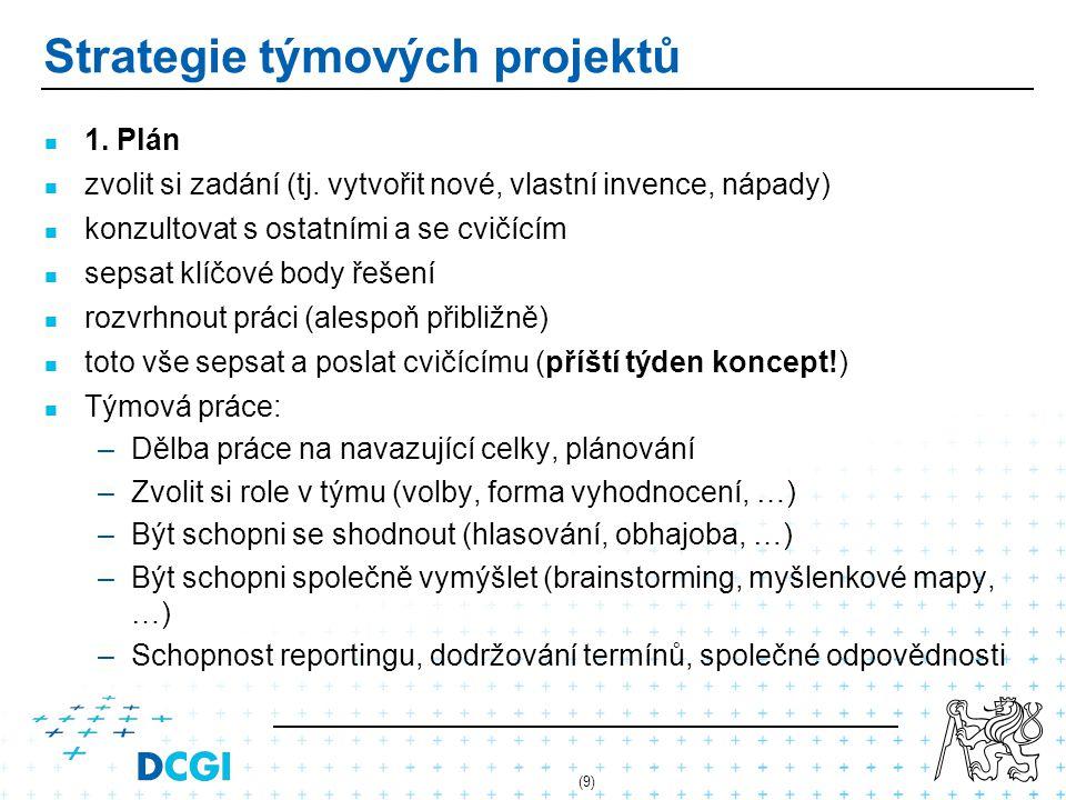 (10) Strategie týmových projektů 2.
