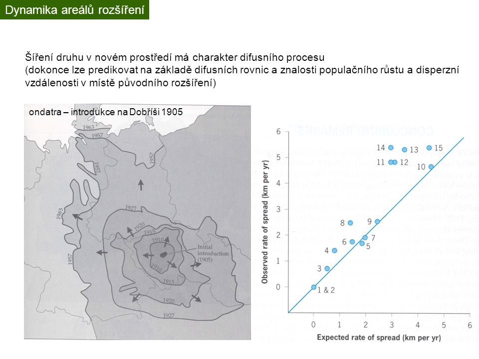 Dynamika areálů rozšíření Šíření druhu v novém prostředí má charakter difusního procesu (dokonce lze predikovat na základě difusních rovnic a znalosti