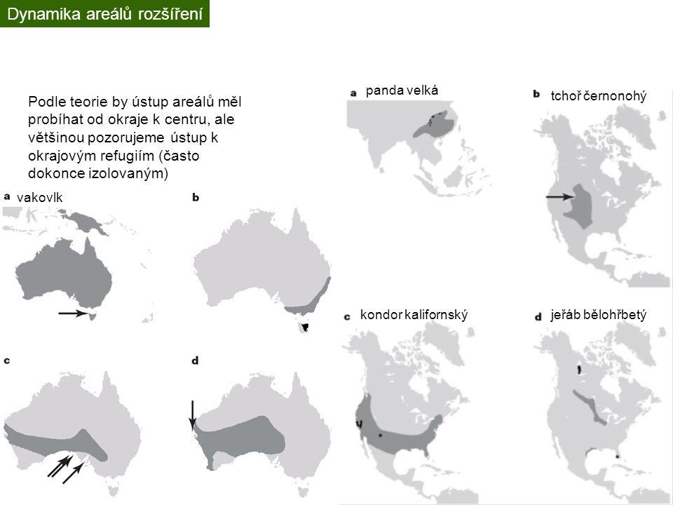 Živočišné invaze Způsobují úbytek původních druhů?