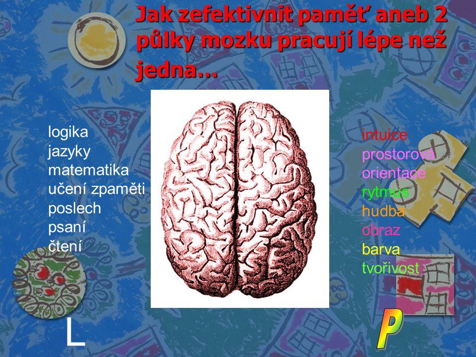 Jak zefektivnit paměť aneb 2 půlky mozku pracují lépe než jedna… logika jazyky matematika učení zpaměti poslech psaní čtení intuice prostorová orienta