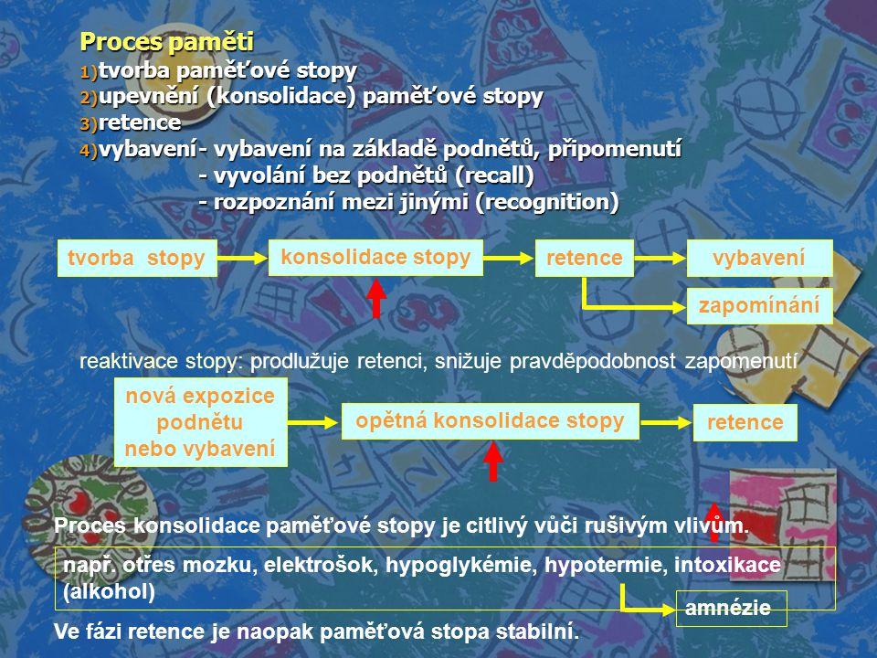 Proces paměti 1) tvorba paměťové stopy 2) upevnění (konsolidace) paměťové stopy 3) retence 4) vybavení- vybavení na základě podnětů, připomenutí - vyv