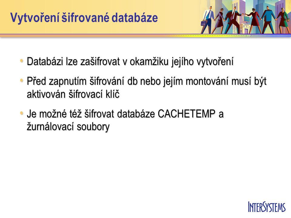 Vytvoření šifrované databáze Databázi lze zašifrovat v okamžiku jejího vytvoření Databázi lze zašifrovat v okamžiku jejího vytvoření Před zapnutím šifrování db nebo jejím montování musí být aktivován šifrovací klíč Před zapnutím šifrování db nebo jejím montování musí být aktivován šifrovací klíč Je možné též šifrovat databáze CACHETEMP a žurnálovací soubory Je možné též šifrovat databáze CACHETEMP a žurnálovací soubory