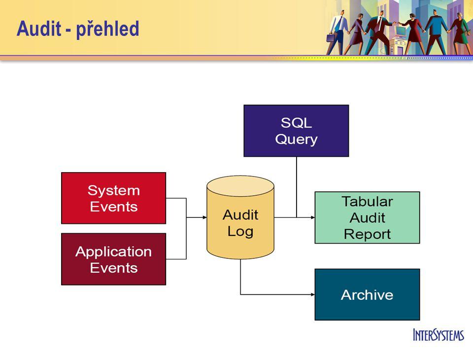 Audit - přehled