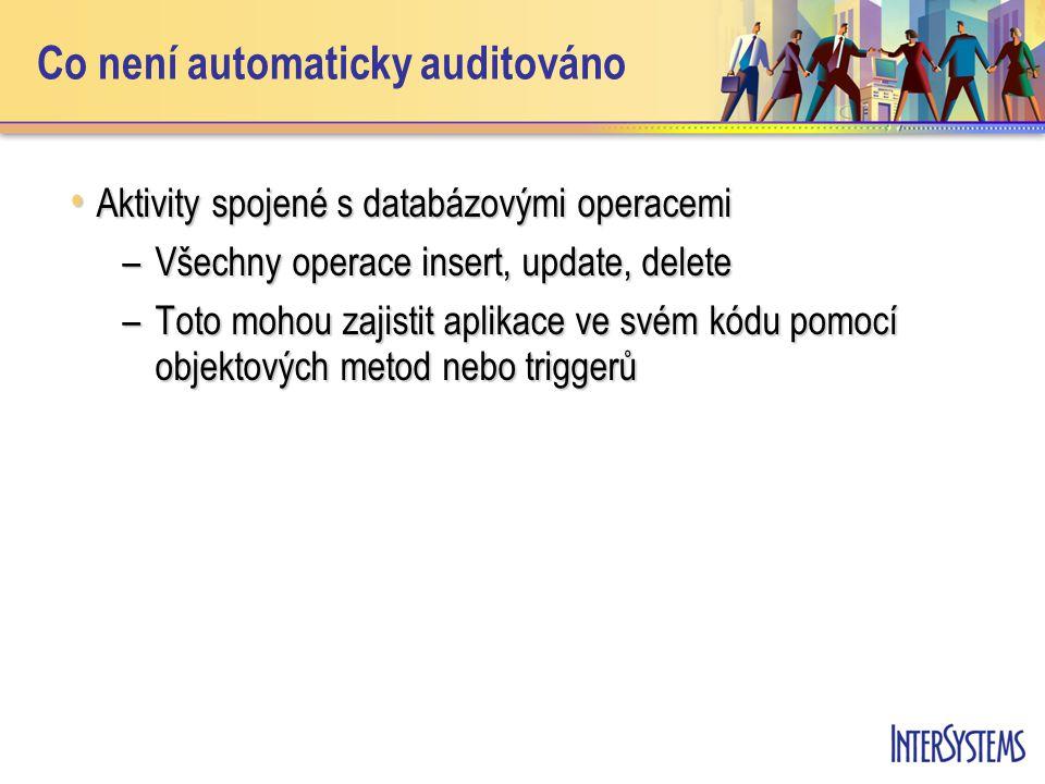 Co není automaticky auditováno Aktivity spojené s databázovými operacemi Aktivity spojené s databázovými operacemi –Všechny operace insert, update, delete –Toto mohou zajistit aplikace ve svém kódu pomocí objektových metod nebo triggerů