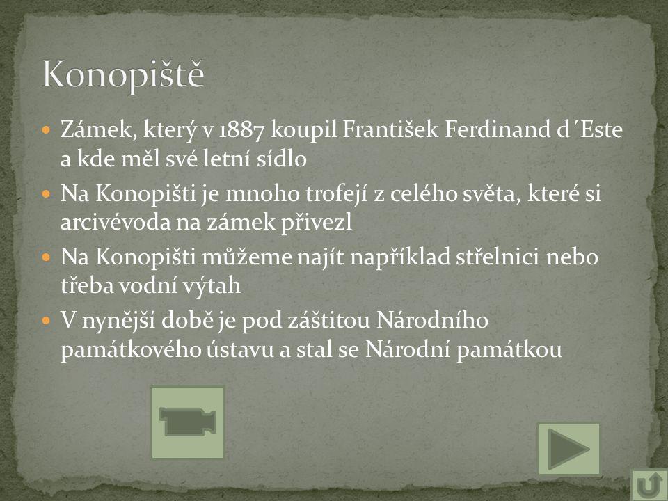 Zámek, který v 1887 koupil František Ferdinand d´Este a kde měl své letní sídlo Na Konopišti je mnoho trofejí z celého světa, které si arcivévoda na z