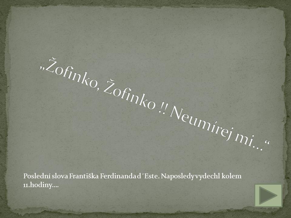 Poslední slova Františka Ferdinanda d´Este. Naposledy vydechl kolem 11.hodiny….