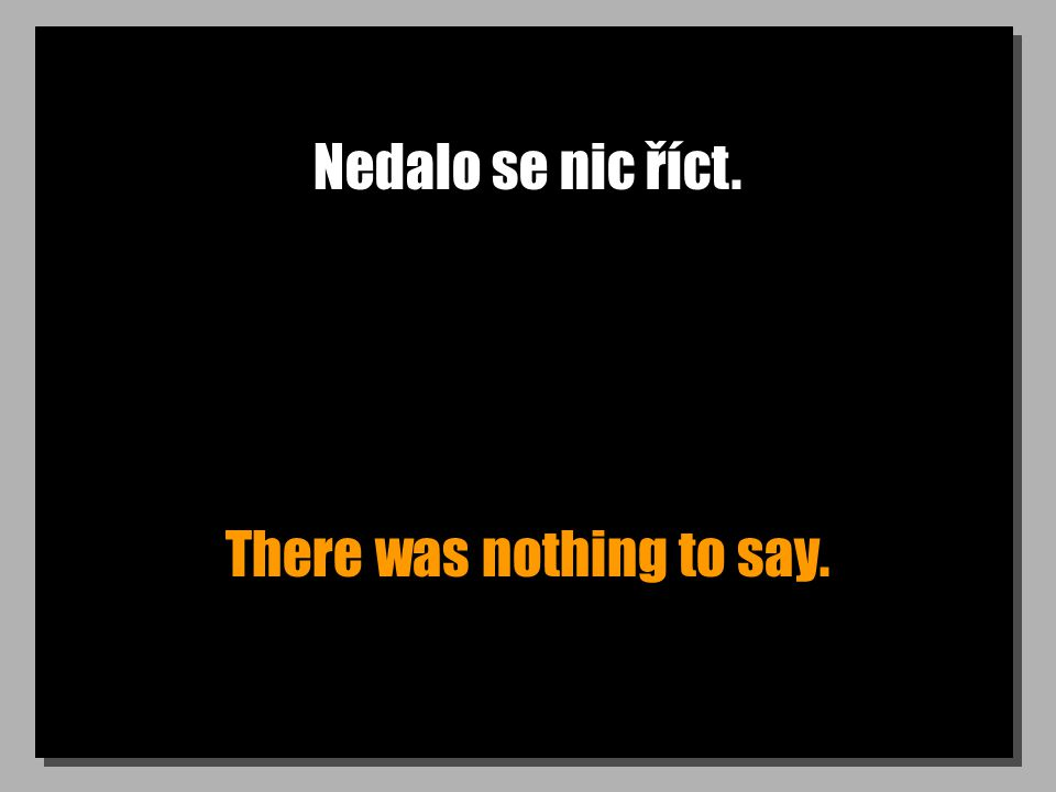 Nedalo se nic říct. There was nothing to say.