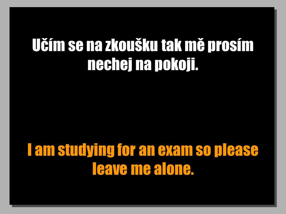 Učím se na zkoušku tak mě prosím nechej na pokoji. I am studying for an exam so please leave me alone.