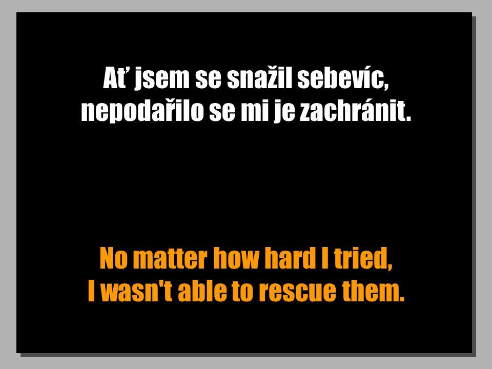 Ať jsem se snažil sebevíc, nepodařilo se mi je zachránit. No matter how hard I tried, I wasn't able to rescue them.
