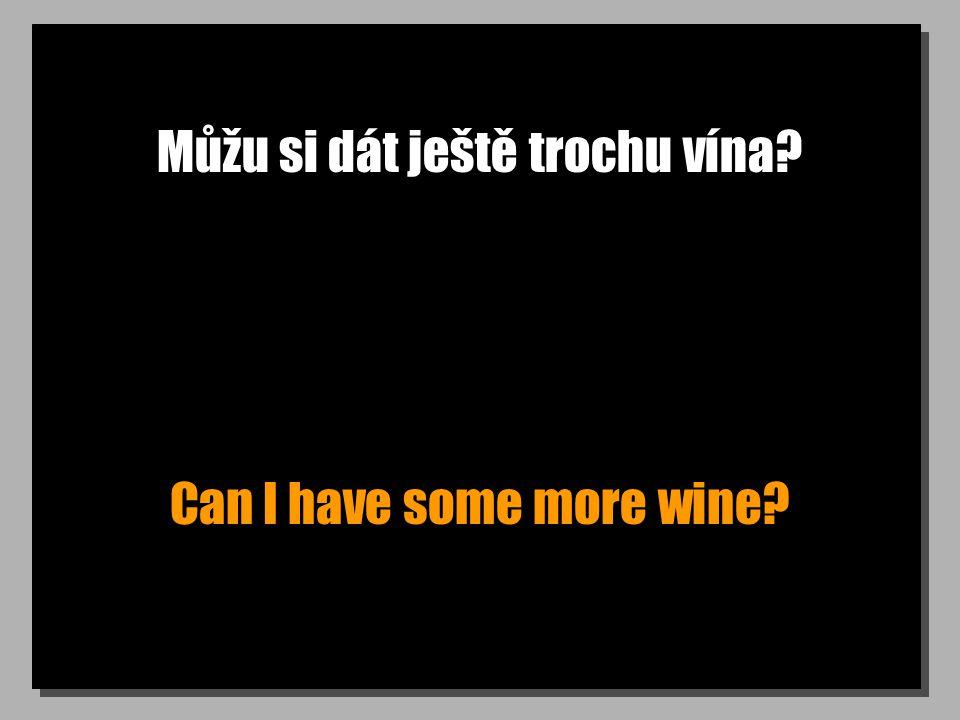 Můžu si dát ještě trochu vína? Can I have some more wine?