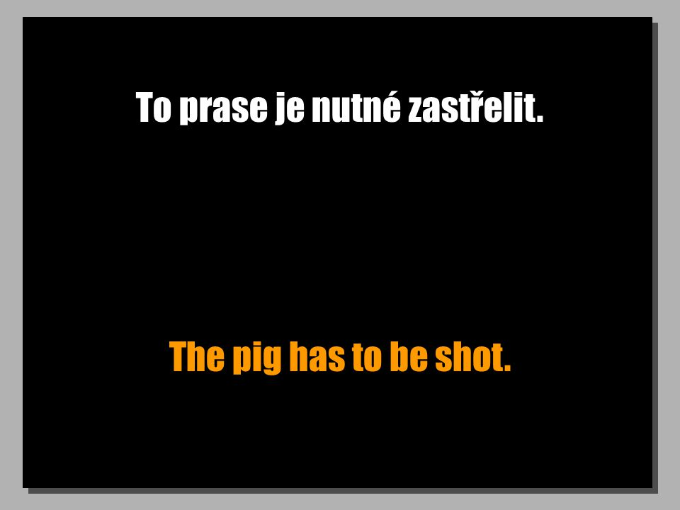To prase je nutné zastřelit. The pig has to be shot.