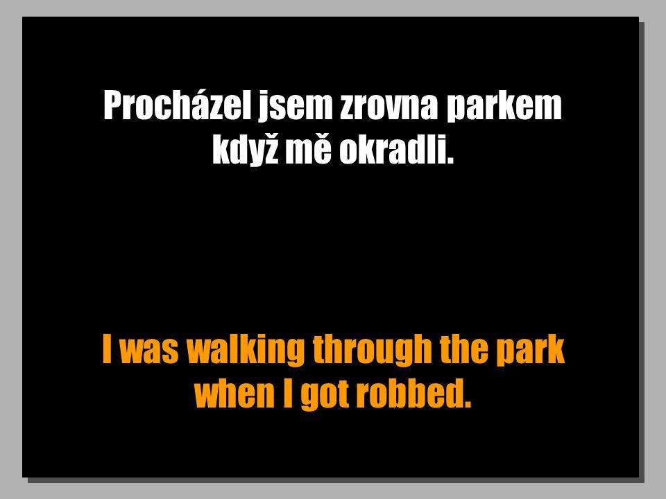Procházel jsem zrovna parkem když mě okradli. I was walking through the park when I got robbed.