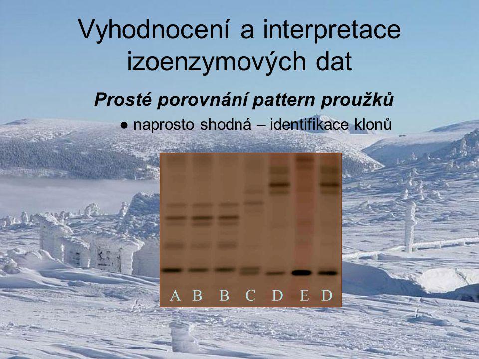 Vyhodnocení a interpretace izoenzymových dat Prosté porovnání pattern proužků ● naprosto shodná – identifikace klonů A B B C D E D