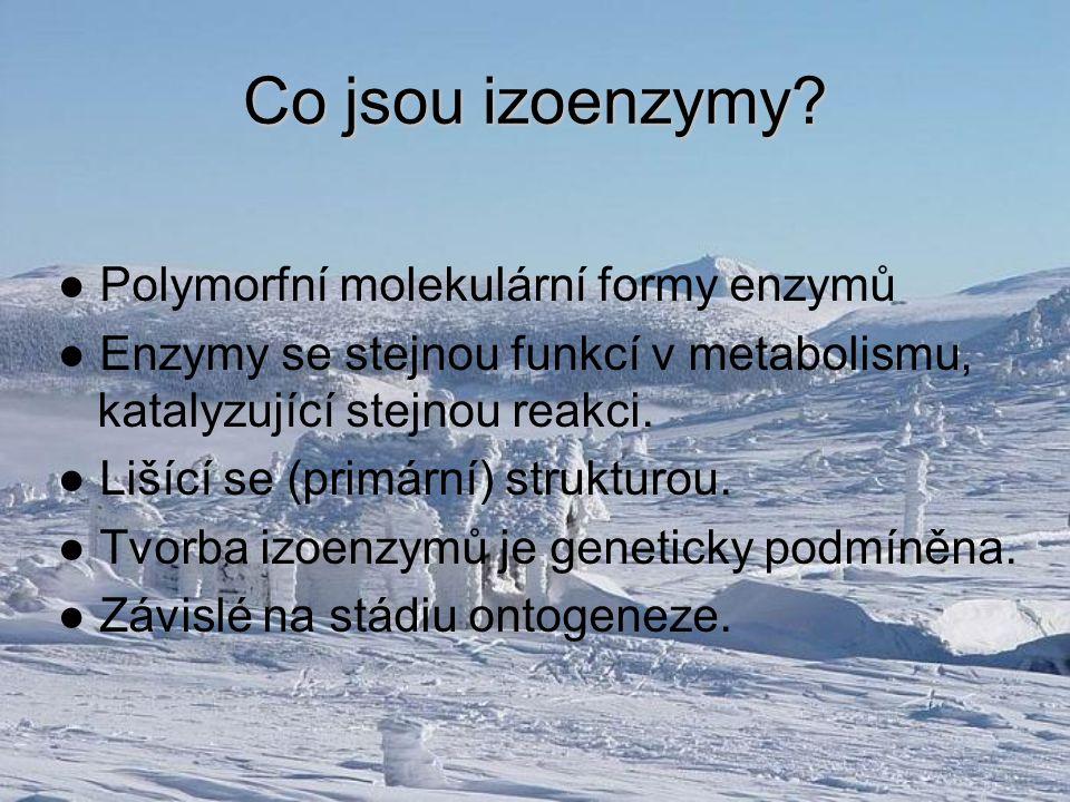 Co jsou izoenzymy? ● Polymorfní molekulární formy enzymů ● Enzymy se stejnou funkcí v metabolismu, katalyzující stejnou reakci. ● Lišící se (primární)