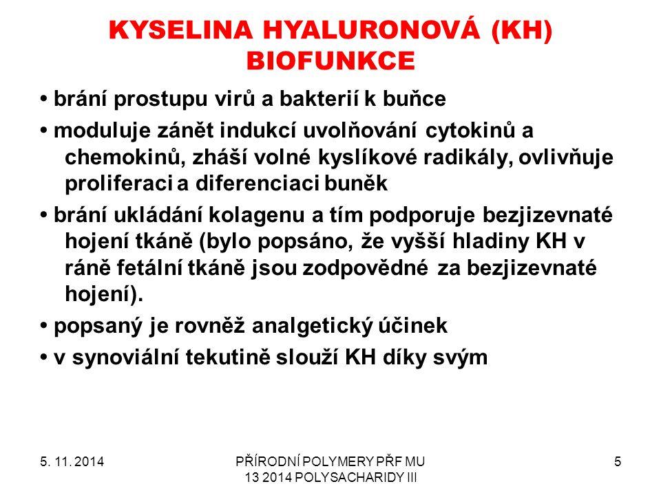 KYSELINA HYALURONOVÁ (KH) BIOFUNKCE 5. 11. 2014PŘÍRODNÍ POLYMERY PŘF MU 13 2014 POLYSACHARIDY III 5 brání prostupu virů a bakterií k buňce moduluje zá