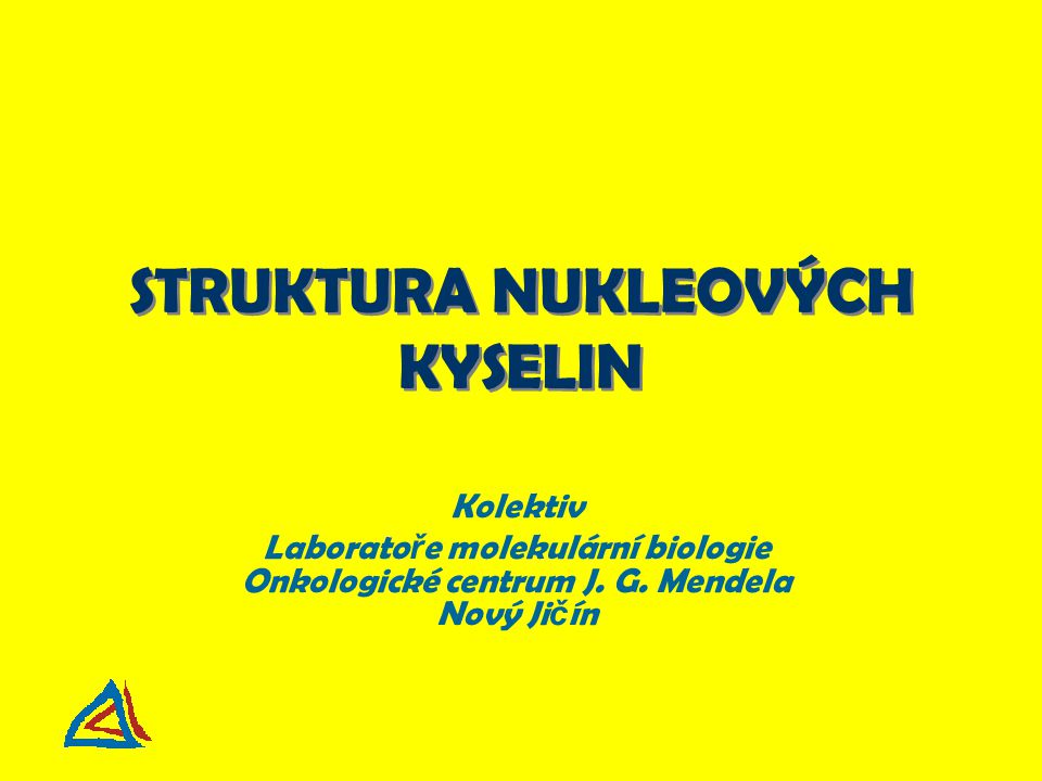 Nukleozid (báze + cukr) Nukleotid (nukleozid + fosfát) (báze + cukr + fosfát) Primární struktura nukleových kyselin Báze A – adenin G – guanin C – cytozin T – tymin U – uracil Cukr  -D-ribóza (RNA)  -D-2-deoxyribóza (DNA) Kyselina fosfore č ná