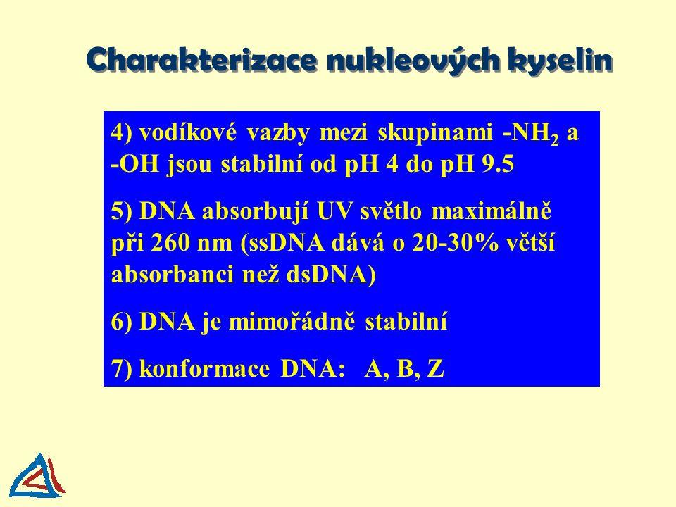 4) vodíkové vazby mezi skupinami -NH 2 a -OH jsou stabilní od pH 4 do pH 9.5 5) DNA absorbují UV světlo maximálně při 260 nm (ssDNA dává o 20-30% větš