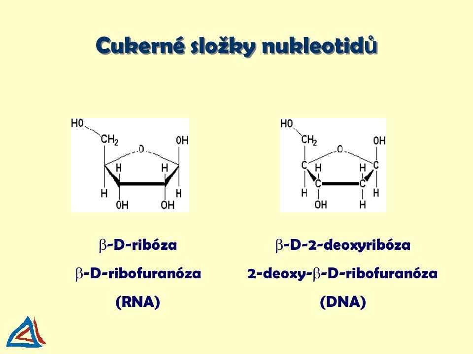 1)fosfátové estery jsou silné kyseliny a chovají se jako anionty při neutrálním pH 2) DNA se snadno precipituje alkoholem 3) báze jsou jen slabě bazické a bez náboje Charakterizace nukleových kyselin