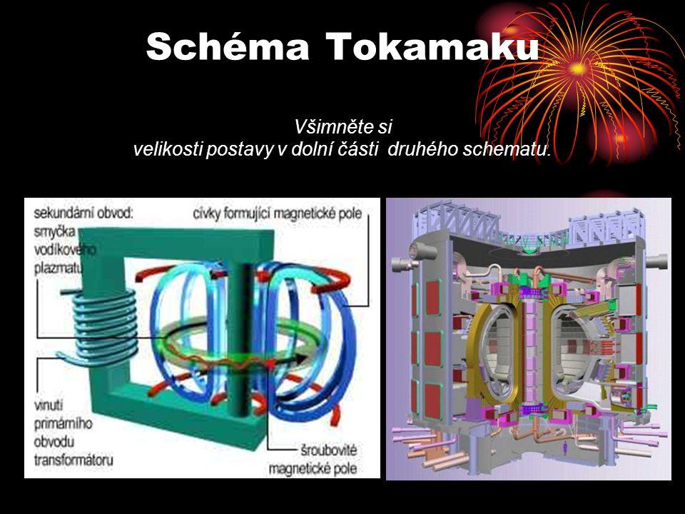 Schéma Tokamaku Všimněte si velikosti postavy v dolní části druhého schematu.