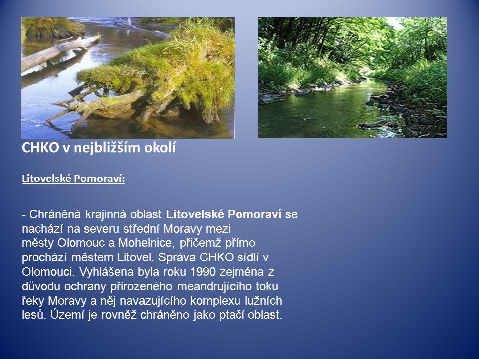 CHKO v nejbližším okolí Litovelské Pomoraví: - Chráněná krajinná oblast Litovelské Pomoraví se nachází na severu střední Moravy mezi městy Olomouc a Mohelnice, přičemž přímo prochází městem Litovel.