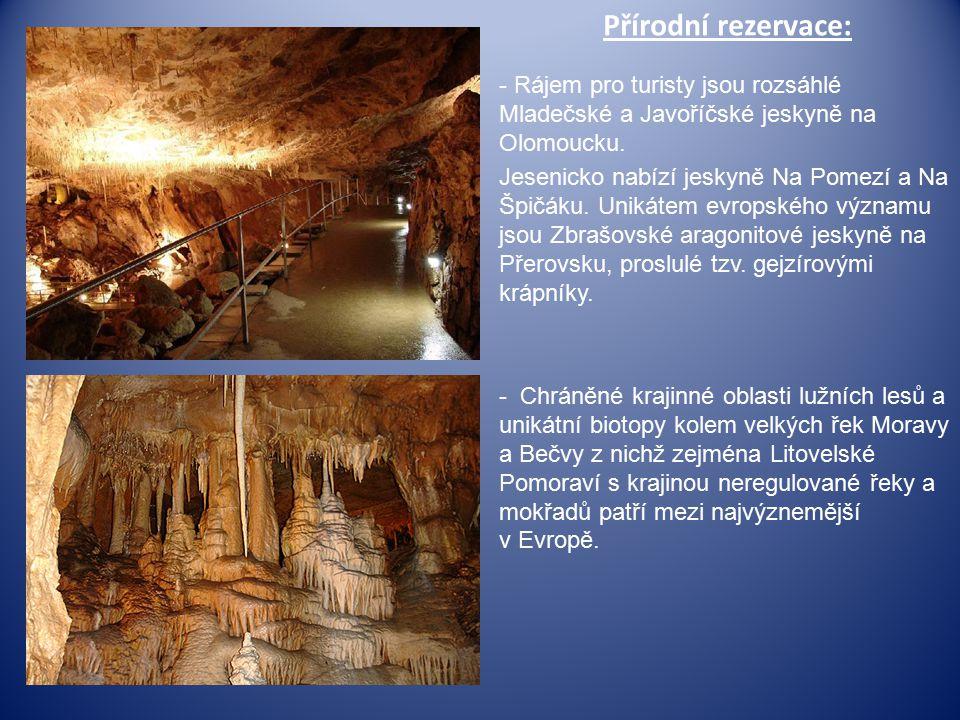 Přírodní rezervace: - Rájem pro turisty jsou rozsáhlé Mladečské a Javoříčské jeskyně na Olomoucku.