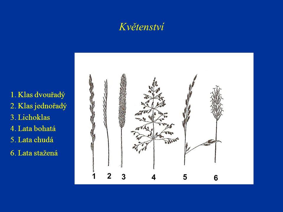 1 - odnožovací uzlina 2 - odnož 3 - listová pochva (HRABĚ et al., 2003; GREGOROVÁ, 2001, upraveno) Odnožování trav: a)Intravaginální, b)extravaginální