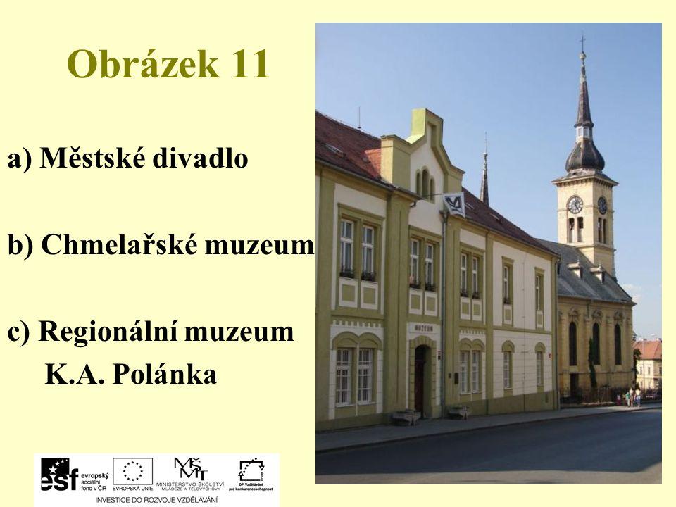 Obrázek 11 a) Městské divadlo b) Chmelařské muzeum c) Regionální muzeum K.A. Polánka